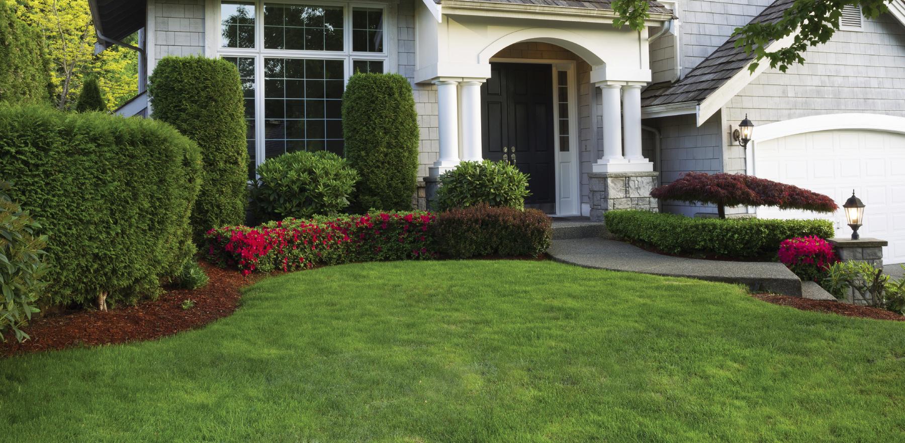 Gazon uni vert gazon ultra vert traitement tonte et for Service entretien pelouse